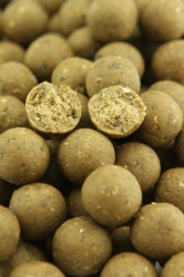 NorthernBaits boilies Blue Mussel 1kg